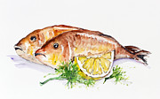 Fries Paintings - Dorado fish by Irina Gromovaja