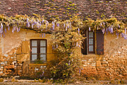 Julian Elliott - Dordogne cottage