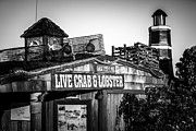 Lobster Sign Posters - Dory Fishing Fleet Live Crab and Lobster Sign Picture Poster by Paul Velgos