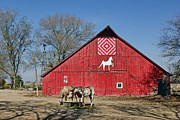 Quilt Barns Framed Prints - Double Bar N #3 Framed Print by Nikolyn McDonald
