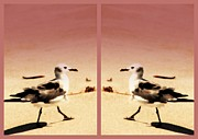 Susanne Van Hulst Prints - Double Gulls Collage Print by Susanne Van Hulst