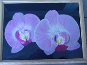 Oils Pastels - Double Orchid by Flo Bernatt