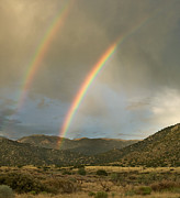 Monsoon Acrylic Prints - Double Rainbow in Desert Acrylic Print by Matt Tilghman