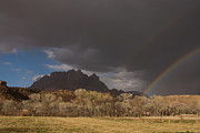 Robert Ford - Double Rainbow over...