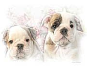 Puppies Digital Art Prints - Double Trouble Bull Dog Puppies Print by Scott Wallace