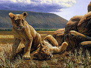 Lion Paintings - Double Trouble by Crista Forest