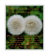 I Die Framed Prints - Double Wishes Quote - When I Die - Dandelion Framed Print by Barbara Griffin