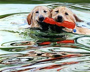 Water Retrieve Framed Prints - Doublemint Framed Print by Molly Poole