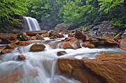 West Virginia Posters - Douglas Falls Spring Rush Poster by Joseph Rossbach