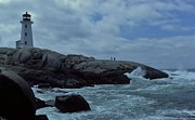 Dove In The Wave At Peggys Cove Print by Dave Lahn