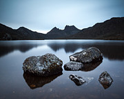 Cradle Mountain Prints - Dove lake at dusk Tasmania Australia Print by Matteo Colombo