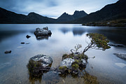 Cradle Mountain Prints - Dove lake Cradle mountain national park Tasmania Australia Print by Matteo Colombo
