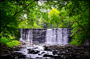 Montgomery Prints - Dove Lake Waterfall at Gladwyne Print by Bill Cannon