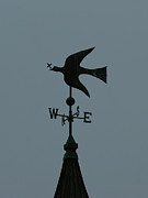 Weathervane Photo Prints - Dove Weathervane Print by Ernie Echols