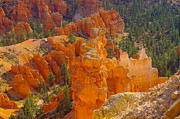 Walk Paths Prints - Down Into Bryce Print by Jeff  Swan