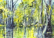 Gulf Drawings Framed Prints - Down On The Bayou Framed Print by Carol Wisniewski