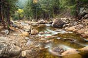 James BO  Insogna - Down Stream