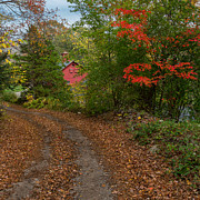 """new England Fall Foliage"" Art - Down The Country Road by Bill  Wakeley"