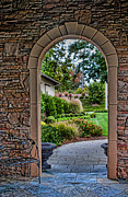 Childress Winery Prints - Down The Garden Path Print by Lara Ellis