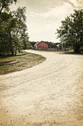 Country Driveway Photo Posters - Down the Road Poster by Margie Hurwich