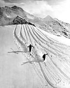 Powder Snow Posters - Downhill Skiing In Powder Poster by Underwood Archives