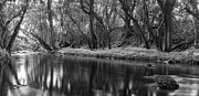 Black And White Prints Prints - Downstream Print by Jon Glaser