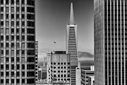 Downtown Area Pictures Prints - Downtown Friends Photograph San Francisco California Print by Dave Gordon