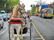 Horse And Buggy Posters - Downtown horses buses and cars Poster by Simply  Photos
