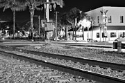Sabal Palm Trees Prints - Downtown Jensen R R Tracks B W Print by Wibada Photo