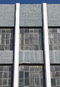 Downtown Pomona Windows Print by Gregory Dyer