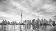Flower Photographs - Downtown Toronto Skyline by Anthony Rego