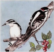 Woodpeckers Paintings - Downy Woodpecker Family by Sandra Maddox