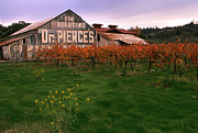 California Vineyard Photo Prints - Dr Pierces barn billboard Print by Jerry McElroy
