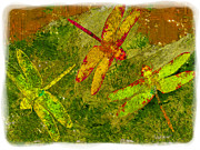 Painter Photo Posters - Dragonflies Abound Poster by Jack Zulli