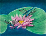 Jeanette K - Dragonflies on Water Lily