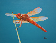 Jimmie Bartlett - Dragonfly