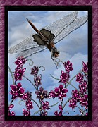 Dragonfly Mixed Media Framed Prints - Dragonfly Framed Print by Karen Sheltrown