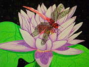 Blooming Drawings Originals - Dragonfly on Water Lily by Nanci Fielder