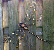 Green Glass Art - Dragonfly Sunrays  by Brenda Brown
