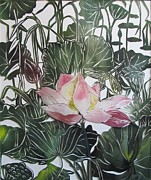 Alfred Ng - dragonfly with lotus