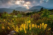 Asheville Posters - Drama On the Trail Poster by Rob Travis