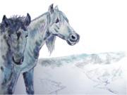Ball Point Pen Paintings - Drawing Horses by Mike Jory