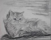 Ruslana Lev - Drawing of a Cat