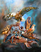 Bird Of Prey Art Prints - Dream Catcher - Spirit Birds Print by Carol Cavalaris