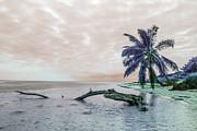 Swank Photography - Dream Island