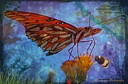 Customized Mixed Media Framed Prints - Dream of the Butterfly Framed Print by JFantasma Photography