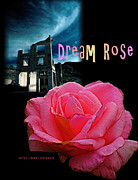 Dean Gleisberg - Dream Rose 1