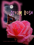 Dean Gleisberg - Dream Rose 2