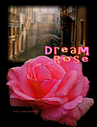 Dean Gleisberg - Dream Rose 6