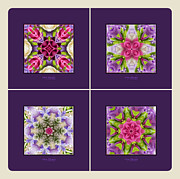 Kaleidoscope Art - Dreaming of My Garden Group 1 by Mary Machare